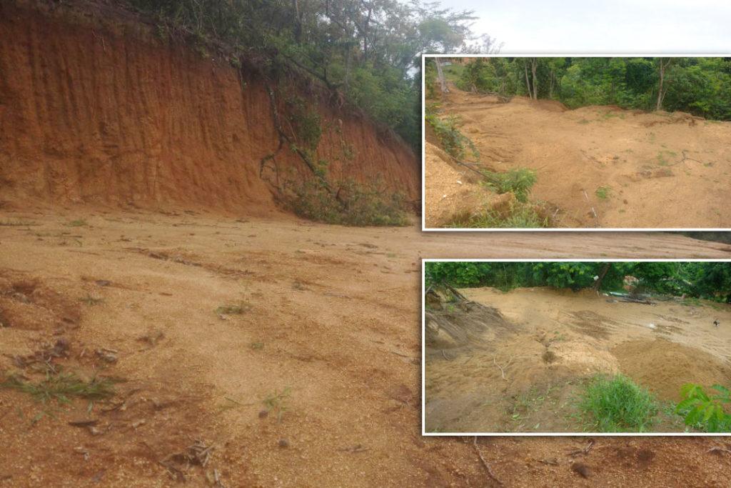 Desmatamento em Campo Grande 28