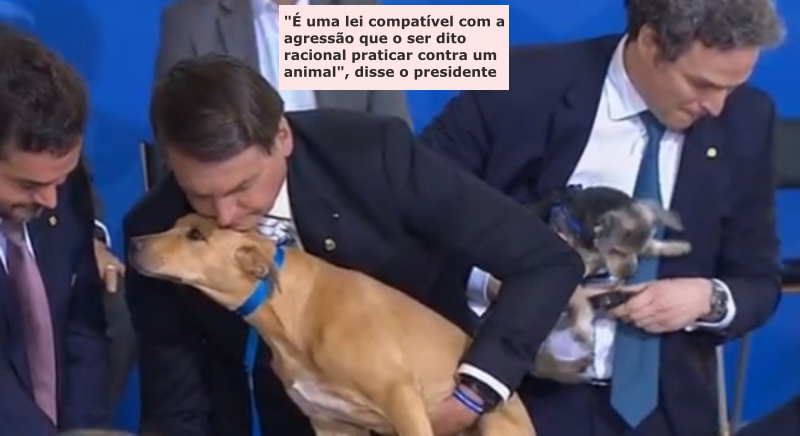 30 Bolsonaro Animais
