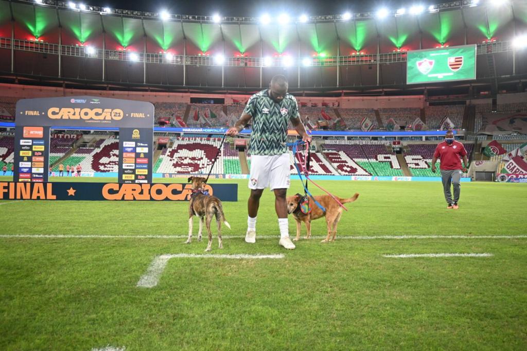 Manoel, zagueiro do Fluminense, brincando com os cães em campo/Divulgação/RJPET