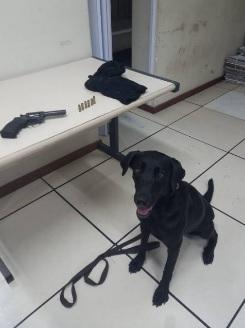 A arma usada na chacina foi encontrada na mata por cães farejadores/Divulgação/Polícia Civil