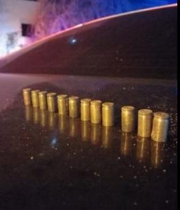 Próximo ao corpo da vítima, a polícia encontrou 12 cápsulas de calibre 380/Divulgação/PM.