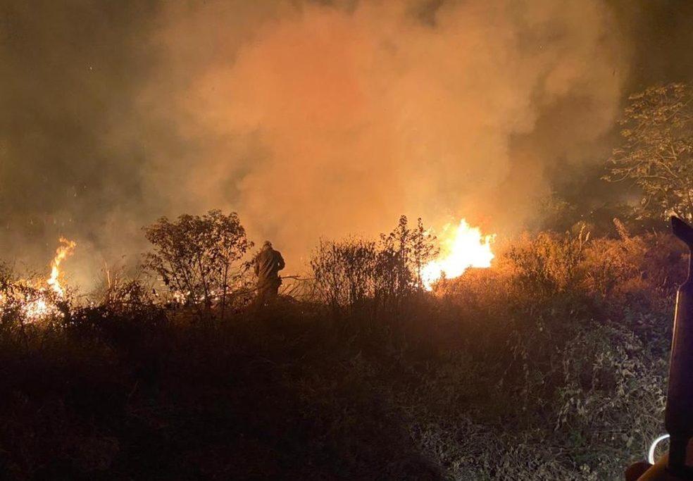 Brasil-02 - Militares combatendo o fogo nesse domingo (11) no pantanal sul-mato-grossense — Foto: Corpo de Bombeiros/Divulgação