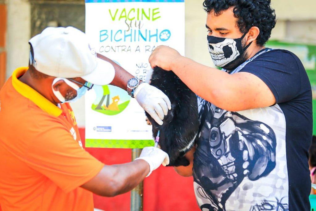 A campanha de vacinação de animais continua em mais quatro bairros/Rafael Barreto/PMBR
