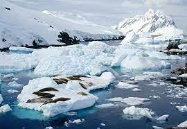 A chance de a temperatura média do planeta subir 3,5°C é de 10%/Reprodução
