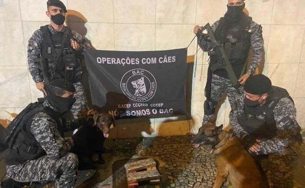 Droga foi encontrada durante uma revista realizada pelo Batalhão de Ações com Cães (BAC)/Divulgação