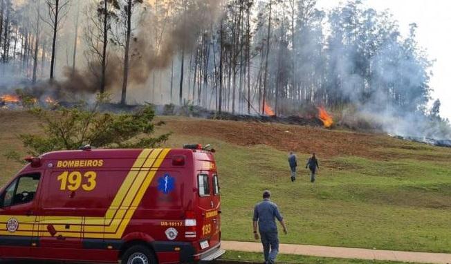 Passageiros e tripulantes morreram na queda do avião (Corpo de Bombeiros/Divulgação)