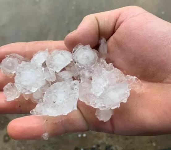 Moradores recolheram pedras de gelo após a chuva de granizo/Reprodução