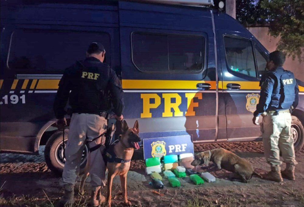 PRF e os cães que encontraram a droga no carro/Reprodução